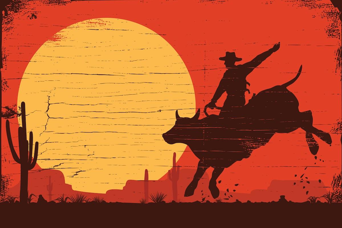 Nuvepro Bull Ride